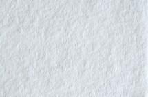 CHAMP DRY TOWEL WIT 200 ST